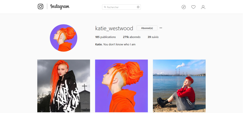 Screenshot-2017-11-29 Katie ( katie_westwood) • Photos et vidéos Instagram