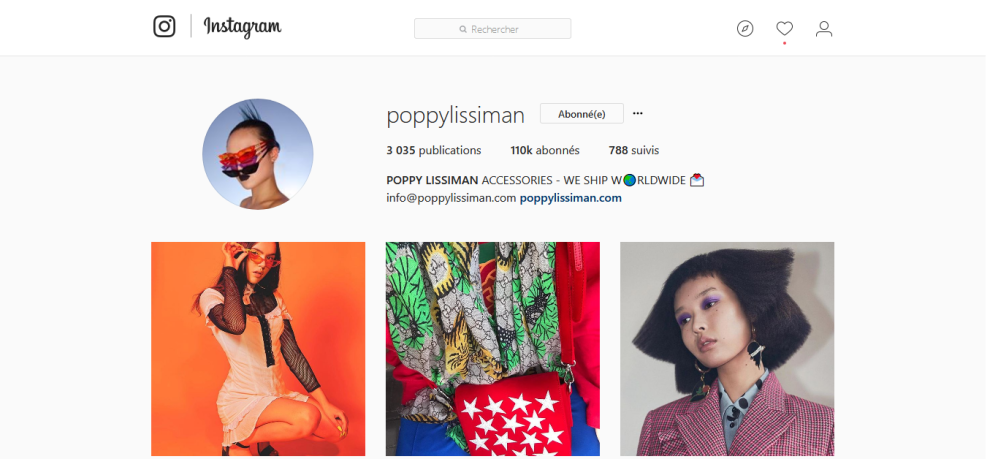 Screenshot-2017-11-29 POPPY LISSIMAN ( poppylissiman) • Photos et vidéos Instagram.png